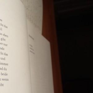 gedichtelesen4groß